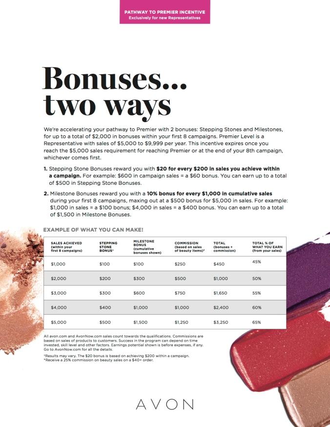 pathway-to-premier-incentive-flyer-en.jpg